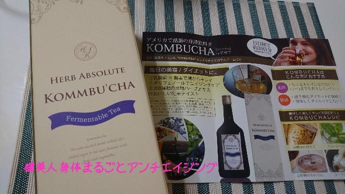 【菌活・腸活】藤原紀香さんがブログにアップした紅茶キノコを【KOMBUCHA】で試してみた